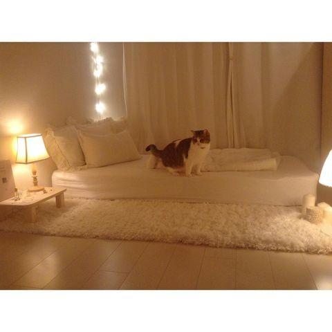 ベッドフレームなしの寝室レイアウト