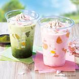 みなさん本日開始ですよ!ドトールの「春フェア」でございます!桜に抹茶にコーヒーだ!春満開が良い感じでございます!