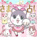 【猫さま占い】最強運に降臨する猫さまは?  3月1日~3月7日運勢ランキング
