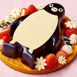 【Suicaのペンギン】ホワイトチョコレートケーキになって登場だよ|News