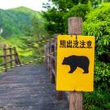 よく見るけど絶滅の危機?日本でもおなじみ意外な絶滅危惧種