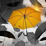 【心理テスト】あなたは普段どんな傘を使っている? 「トラブルに直面したときのあなた」