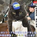 【オラオラオラ】黒猫の力強い乾パン砕き! 自衛隊のアレンジレシピがおいしそう - 「消費期限を迎える前にこう使えばよいのか」「にゃんポイントアドバイスが面白い」と話題に