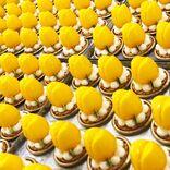 【新商品】連日行列人気のチューリップ&ローズから、可愛すぎる春ケーキがついに新登場だよ News