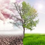 【スピリチュアル・ビートルズ】環境、動物の権利擁護に取り組み続けるポール ジョージも「大量生産・大量消費」に批判的