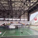 JTA、「世界自然遺産」特別デザイン機を就航 デカール100枚で初のフルラッピング