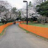 「花見禁止」の代々木公園 今からは想像絶する1年前の状況とは