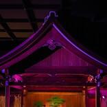 瑛人×flumpoolによるSPコラボも 能楽堂で一夜限りのアコースティックライブ【春の謡会】開催