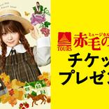 田中れいな出演、21年開催の『TOURSミュージカル「赤毛のアン」』、全国1000組2000名様を無料招待
