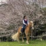 """""""国民的美少女""""佐藤藍子の今、馬に乗ってお花見する光景に「桜より美しい」の声"""
