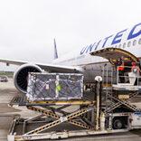 旅客機を使用した貨物専用フライト ユナイテッド航空はワクチン空輸などで年1万1000便に
