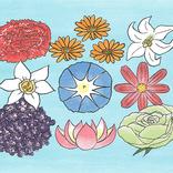 【九星気学】4月の運勢は?「人生を大きく発展させる日がある」九星フラワー占い