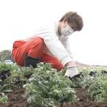 """有岡大貴、東京ドイツ村で""""体にくる""""苗植え作業 満身創痍で挑む"""