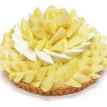 夏先取りのさわやかケーキ パイナップル好き集まれ!