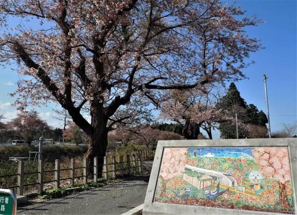 桜とタイル画