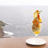 絶景カフェで楽しむ贅沢パフェ!熱海の味が広がる「甘夏と煎茶のパフェ」