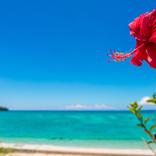 沖縄旅行をお得にする、ダイナミックツアーと日程ずらし
