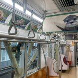 JR電車内が胸キュンの動物園に? 「深い癒やしトレイン」について聞いた