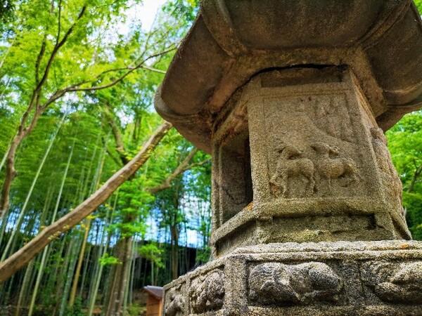 奈良県「瑜伽山園地 旧山口氏南都別邸庭園」石の灯籠