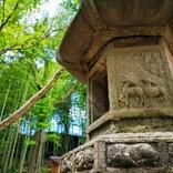 【奈良のおすすめお出かけスポットまとめ】自然や歴史、町の散策、カフェまで、ゆるりと憩う17選