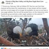 雪に埋もれても卵を温め続けたハクトウワシ 様々な試練を乗り越えるもヒナは孵らず(米)<動画あり>