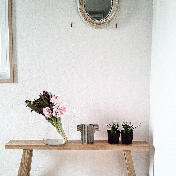 南西の玄関と花