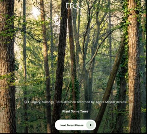 「tree.fm」