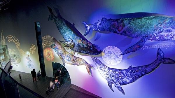 """""""L'oeil de la Baleine /鯨の目 """" パリ・アクアリウム、フランス Aquarium of Paris Cineaqua, Paris, France Year 2019 Photo by Serge Koutchinsky"""