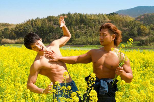 菜の花の覇権争いをするマッチョ