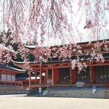 絶景と秘湯に出会う山旅(21)比叡山、琵琶湖畔から延暦寺そして宿坊へ