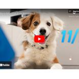 『Notion』にGoogleドキュメントやマップ、YouTubeなどを埋め込む方法