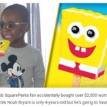 アマゾンで918本のアイスキャンディを注文してしまった4歳児 請求金額は28万円に(米)
