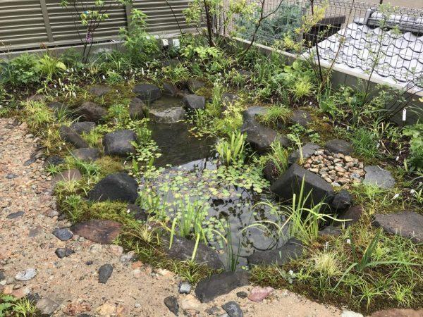ビオトープがおしゃれな庭のデザイン