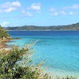 【奄美大島】手つかずの自然、島グルメ、お土産・・・おすすめスポットまとめ~すべて現地ルポ~