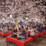 「路上飲み」や「公園飲み」は日本人の伝統!?屋外での飲食にまつわる意外な歴史