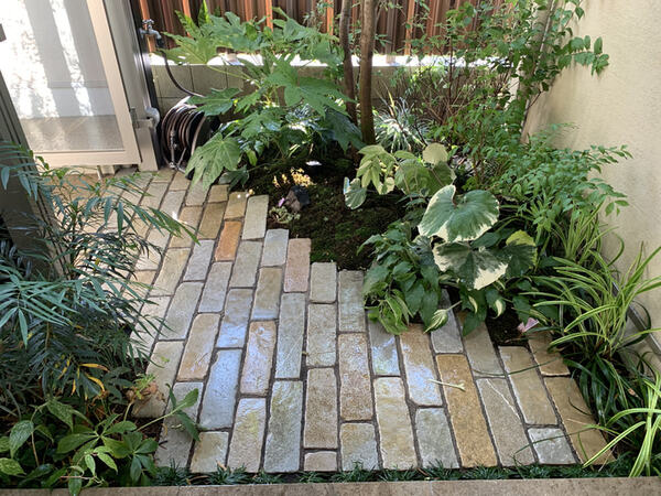 玄関脇に小さな庭をつくろう