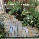 小さい庭のつくり方。緑のインパクト大!玄関脇、道路際だけで充分楽しめます