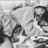 福山雅治、仲里依紗も…「保護猫」と暮らす芸能人6人。あぁ愛おしい