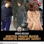 変装用マスクで白人に 空き巣を働いた黒人の男を逮捕(米)