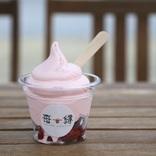 カニ丼、ソフトクリーム、いちごスイーツ・・・「水木しげるロード」おすすめグルメスポット3選【鳥取県】