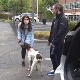リポーターのお手柄! 盗まれた犬のリポート中、目の前を散歩していたのは?