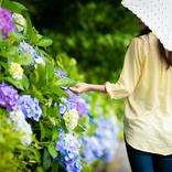 【雨の日の過ごし方】快適にするアイデア、雨にまつわる豆知識、美しい風景