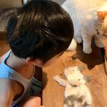 猫の抜け毛で、男の子がやったことは…? 「素晴らしい発想」「最高の光景」