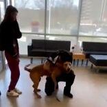 行方不明の愛犬を探し続けた男性 4年後、奇跡が起きた 「もらい泣きした」
