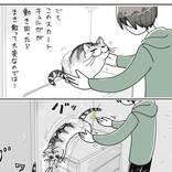猫の抜け毛に気付いた飼い主 処理しようとすると…?