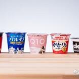 【ダイエット】『おいしい無糖カップヨーグルト特集』R-1/恵 megumi/パルテノ/わたしのチカラ Q10【食べ比べ】