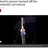 高さ10メートルの電柱の上で助けを求める猫 救出のため地域は一時停電に(英)<動画あり>