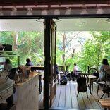 【京都】さわやかな新緑を望めるテラスのあるカフェ9選!~すべて現地ルポ~