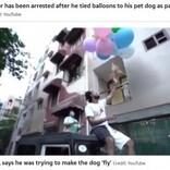 愛犬を風船で大空へ ユーチューバーが動物虐待で逮捕(印)<動画あり>