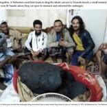 イエメンの漁師、クジラの死骸から約1億6500万円の「龍涎香」発見で生活が一変<動画あり>